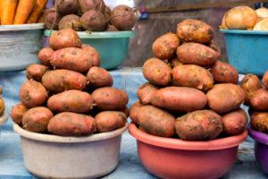 Potato Diet, Potato Detox